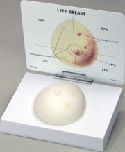 Breast Cancer Pharmaceutical and Anatomical Model Gifts